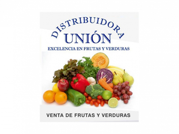 Logo-distribuidora-union